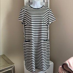 Ralph Lauren  Dress NWOT